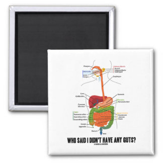 Who Said I Didn't Have Any Guts? Digestive System 2 Inch Square Magnet