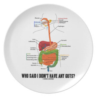 Who Said I Didn't Have Any Guts? Digestive System Plates
