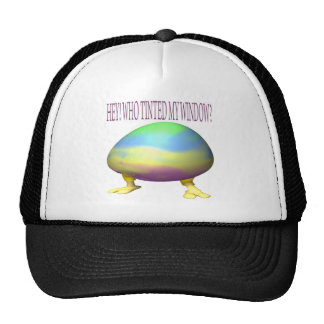 Who Tinted My Window Mesh Hats