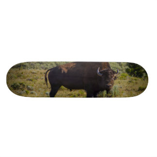 Who You Looking At Skateboard Deck