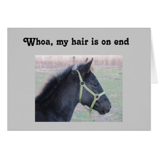 WHOA, MY HAIR IS ON END - 40TH BIRTHDAY GREETING CARD