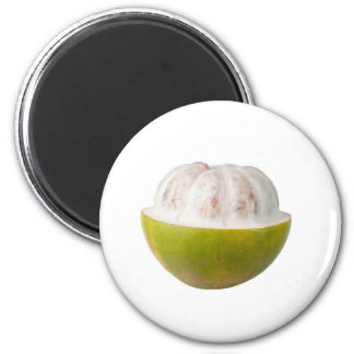 Whole Pomelo 2 Inch Round Magnet