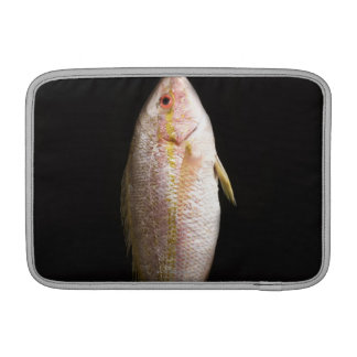Whole Sea Bass MacBook Air Sleeve