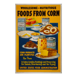 Wholesome - nutritious foods from corn poster