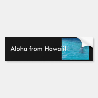 Wholphin tail wave bumper sticker