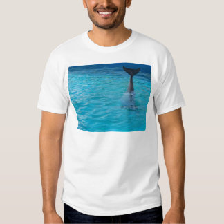 Wholphin tail wave T-Shirt