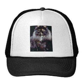 Whoo Trucker Hat