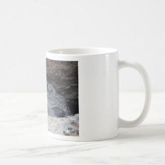 Whooooo needs caffeine ?? coffee mug