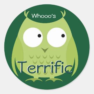 Whooo's Terrific Owl Classic Round Sticker