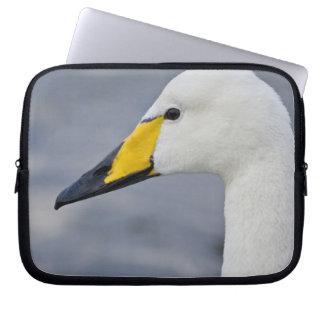 Whooper Swan at a pond in Reykjavik, Iceland. Laptop Sleeves