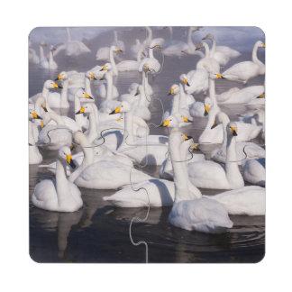 Whooper Swans, Hokkaido, Japan Puzzle Coaster