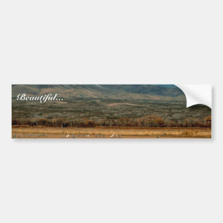 Whooping and Sandhill Cranes Car Bumper Sticker