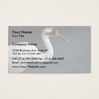 Whooping Crane Business Card