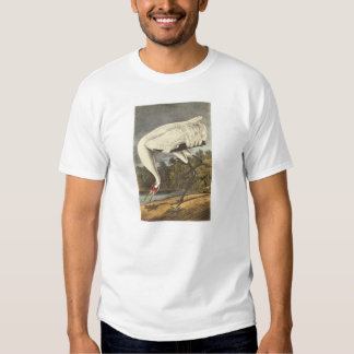 Whooping Crane by Audubon Tshirts