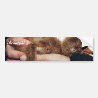 Whooping Crane Chick Bumper Sticker