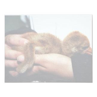 Whooping Crane Chick Custom Invitation