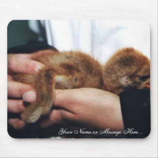 Whooping Crane Chick Mouse Pads