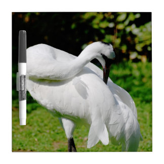 Whooping Crane Dry Erase Board