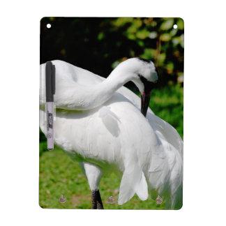 Whooping Crane Dry-Erase Whiteboard