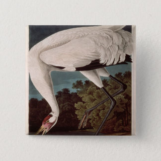 Whooping Crane, from 'Birds of America' Pinback Button