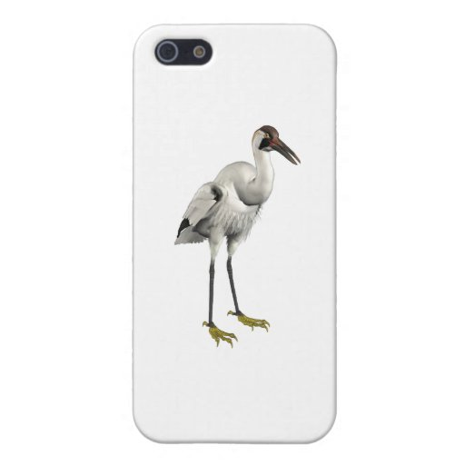 Whooping Crane iPhone 5 Cover