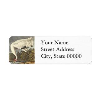 Whooping Crane, John Audubon Custom Return Address Labels