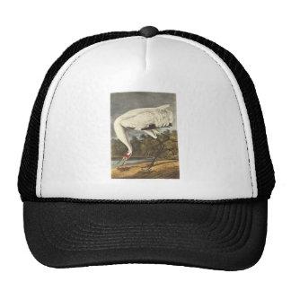 Whooping Crane, John Audubon Trucker Hat