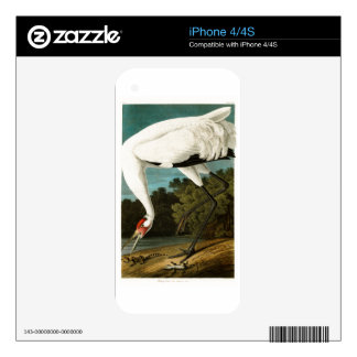 Whooping Crane John James Audubon Birds of America Skin For iPhone 4