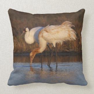 Whooping Crane wintering 2 Pillow