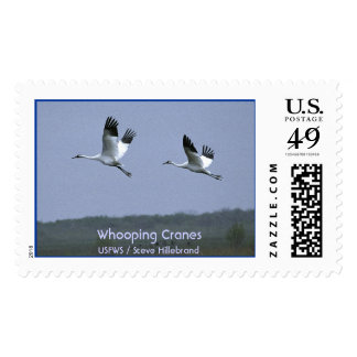 Whooping Cranes Postage