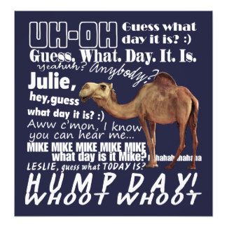 Whoot Whoot! Hump Day Photo Art