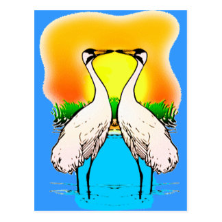 Whopping Cranes in Love Postcard