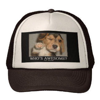 whos-awesome trucker hat