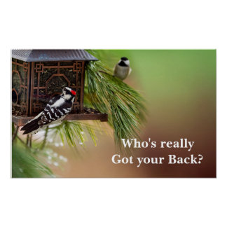 WHO'S GOT YOUR BACK POSTER -(Woodpecker/Chickadee)