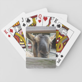 Who's looking at me? card deck