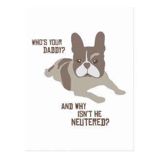 Who's Your Daddy? Postcard