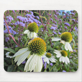 Whte Coneflowers with Blue Mouse Pad