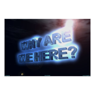 WHY ARE WE HERE? POSTER