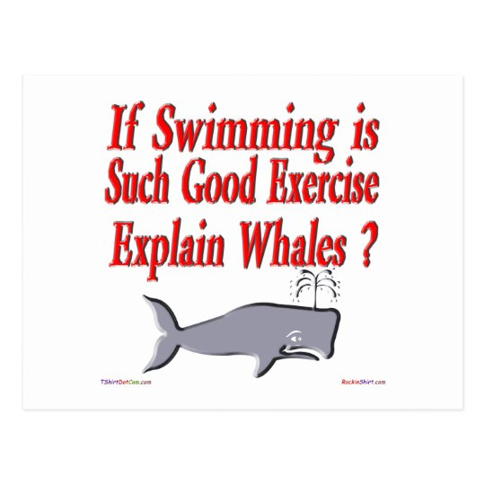 Why Are Whales Fat Postcard