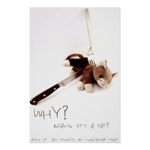 Why? Because it's a Cat? Poster