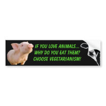 why do you eat animals bumper sticker