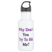 Why Don't You Try To Hit Me Stainless Steel Water Bottle