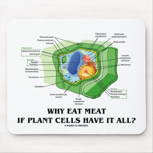 Why Eat Meat If Plant Cells Have It All? (Veg Fun) Mouse Pad