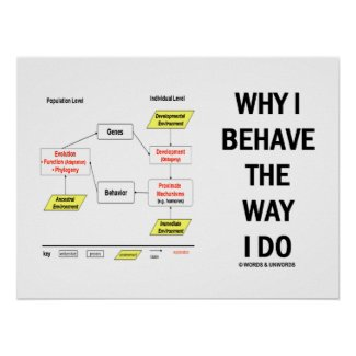 Why I Behave The Way I Do Chart Diagram Print