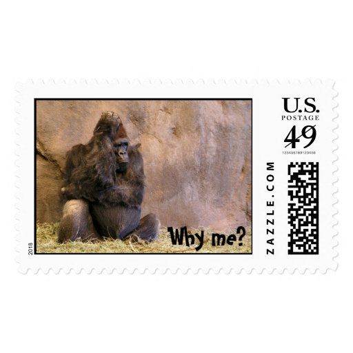 Why me postage stamp zazzle Why do we put stamps on letters