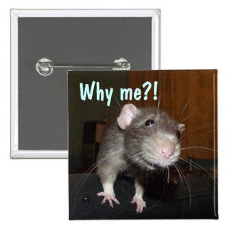 why me?! rat badge button