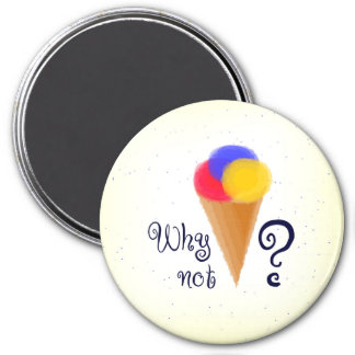 """""""Why not?"""" sign with ice-cream cone Magnet"""