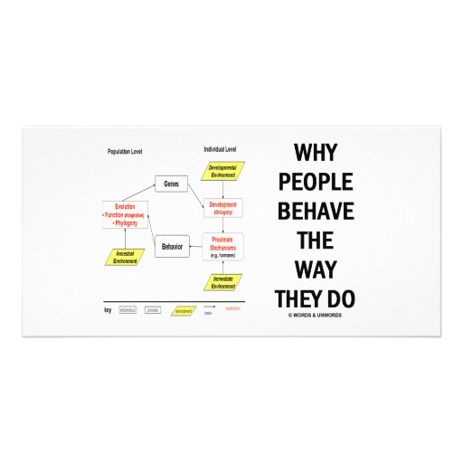 Why People Behave The Way They Do Photo Card Template