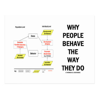 Why People Behave The Way They Do Postcard