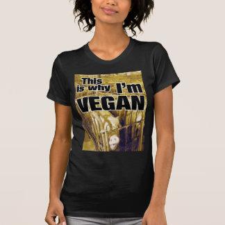 Why Vegan (Women's) T-Shirt